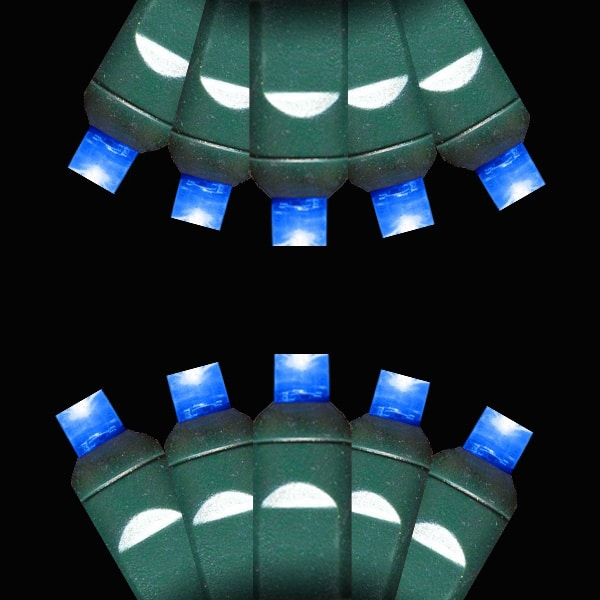 Blue M-5 LED Lights