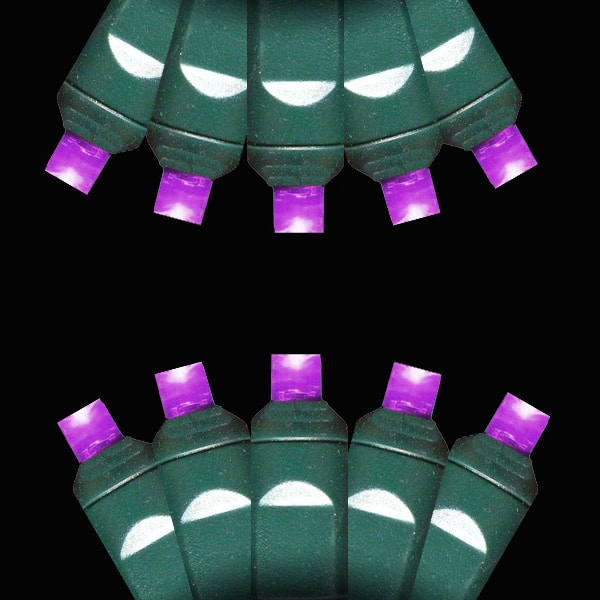 Purple M-5 LED Lights