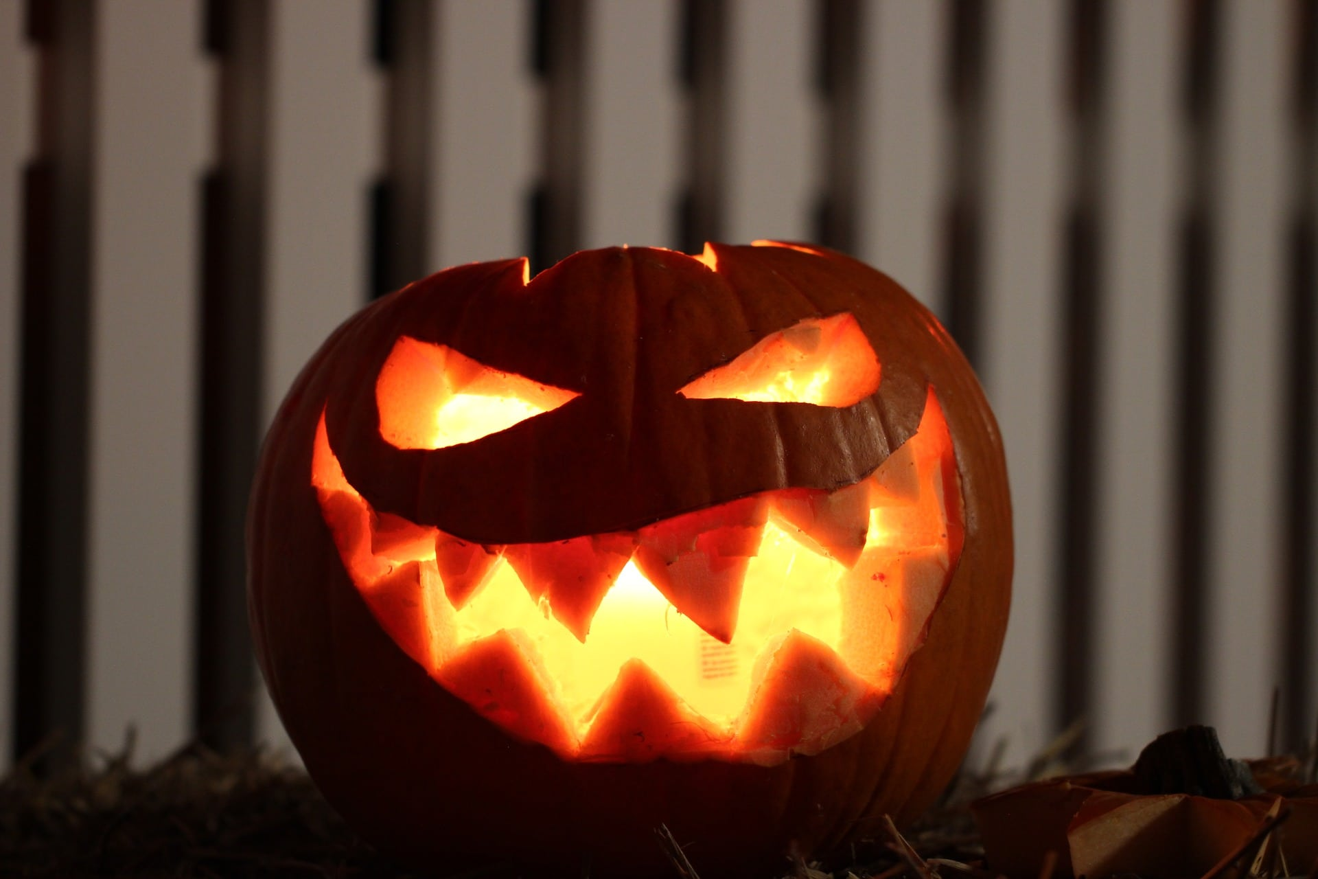 Jack O Lantern Ideas For Halloween Northern Lights And Trees