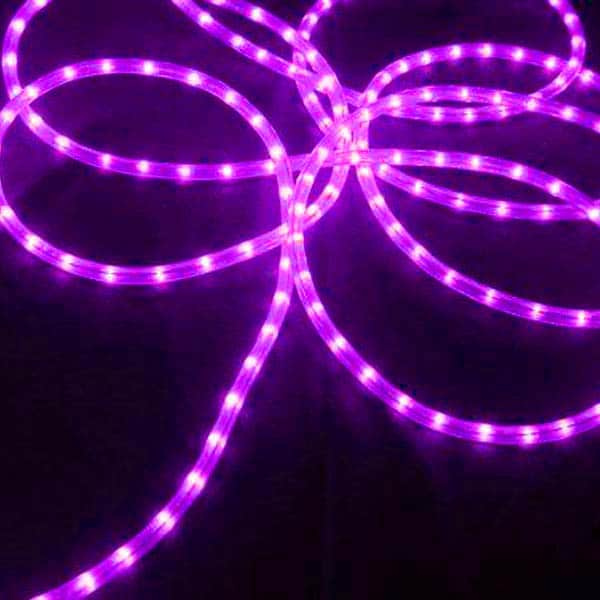 Purple 3/8-Inch 100 Ft Rope Lights