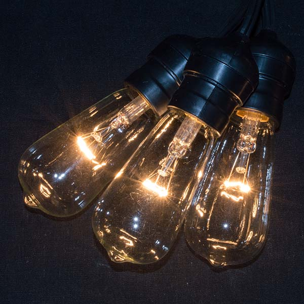 Edison Lights With Suspended Sockets