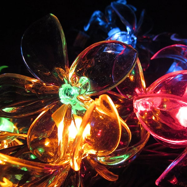 Multi Plumeria Flower String Lights