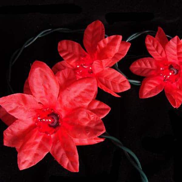 Poinsettia Lights String Set